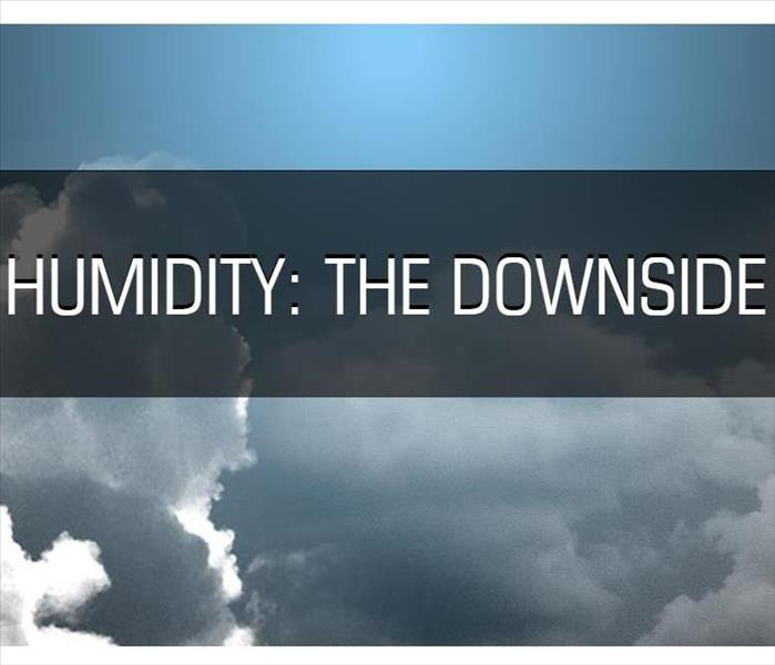 Water Damage Humidifiers: The Downside