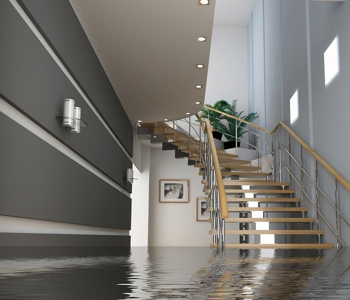 Water Damage The first thing you should do during a water damage is...