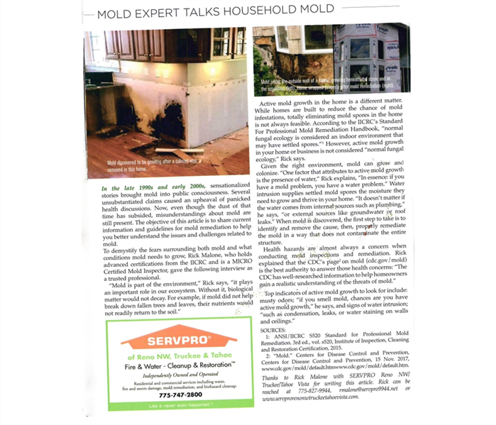 Mold Remediation SERVPRO Featured in CATT Magazine: Mold Expert Talks Household Mold